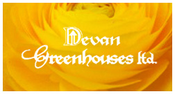 Devan Greenhouses Website & Newsletter Marketing