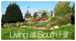 South Hill Apartments Website